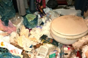 Hoarding Clean Up and Junk Removal