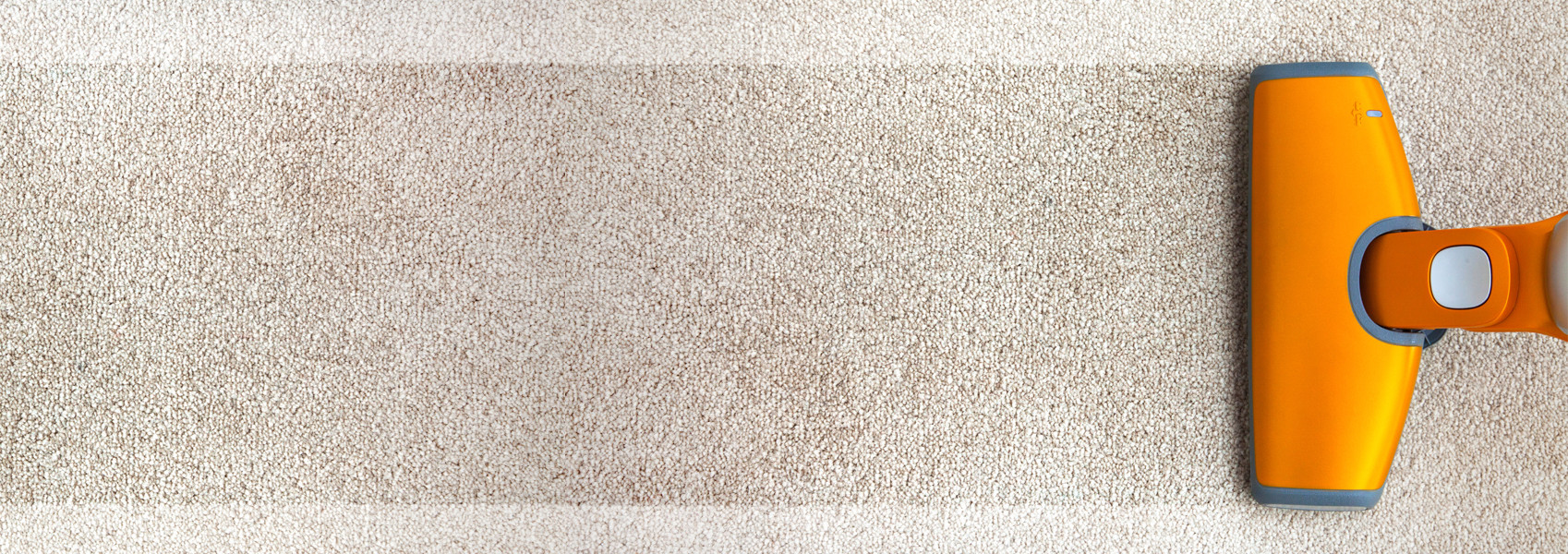 Natural Carpet Cleaning Tips For Every Homeowner Elk