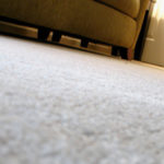 Best Questions to Ask When Hiring a Carpet Cleaning Company in Carpentersville, IL