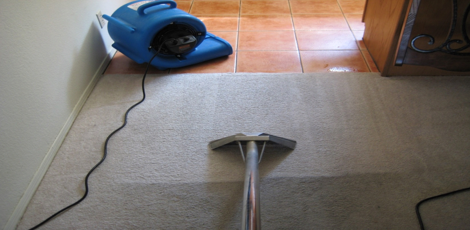 Image result for carpet cleaning lake forest