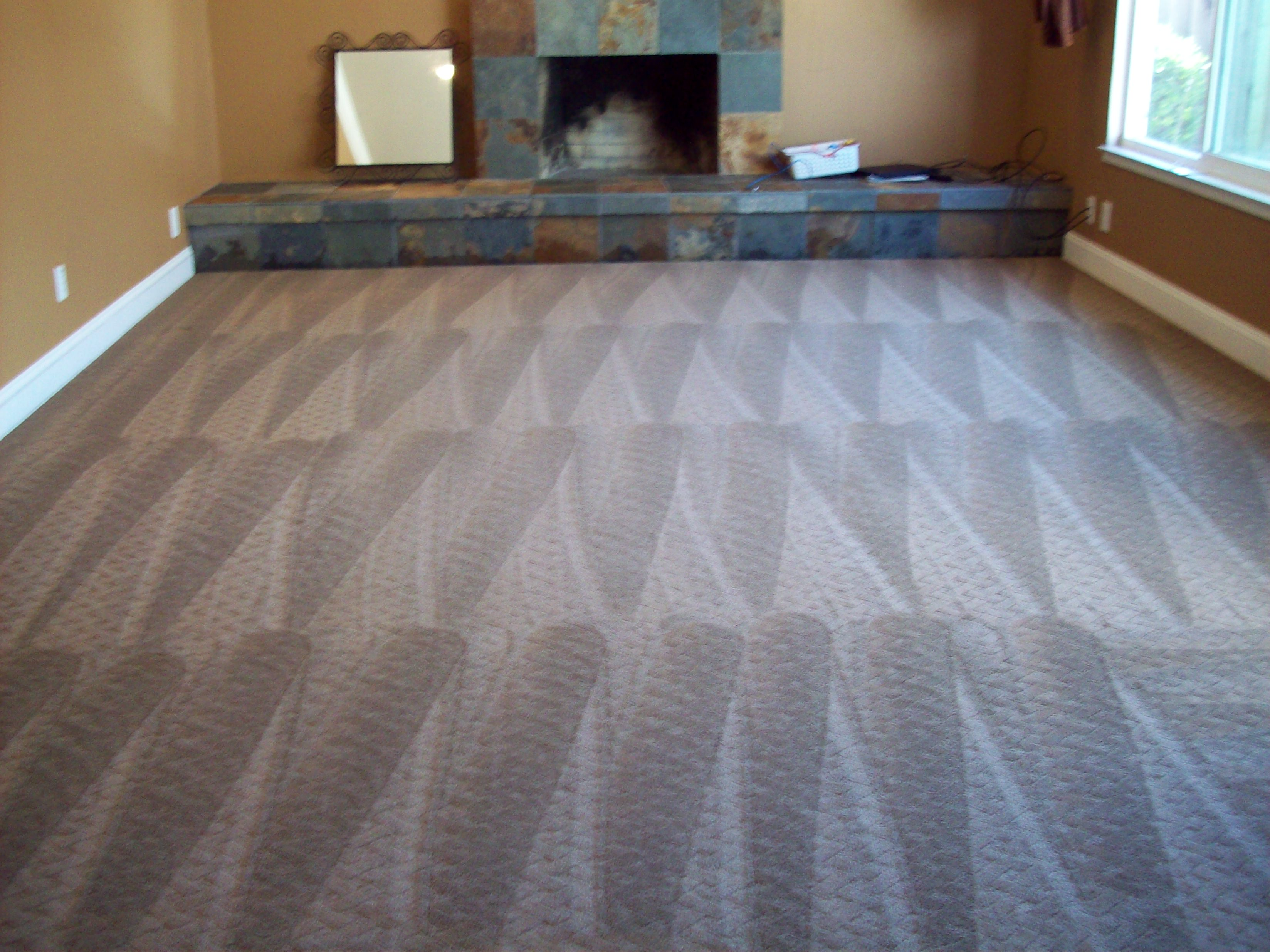 Carpet Cleaning- Lake Forest IL