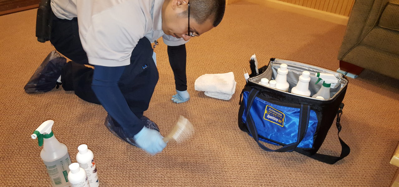 Professional Stain-Spot Removal