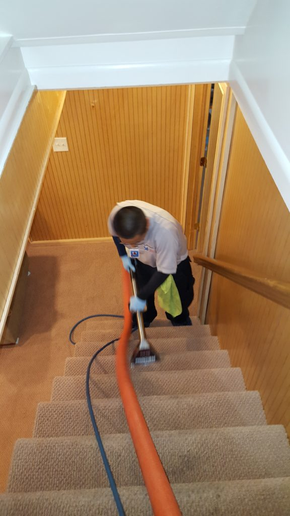 Residential Stairs Carpet Cleaning