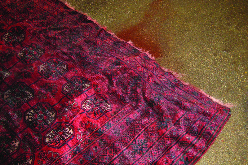 Flood Wet and Damaged Rug